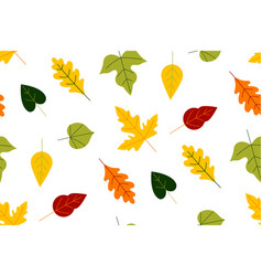 autumn leaf fall autumn oak leaves in orange vector image