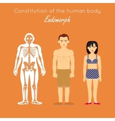 Constitution of human body endomorph endomorphic vector