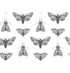 seamless pattern with hand drawn insects vector image