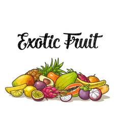 set exotic fruits with calligraphic lettering vector image