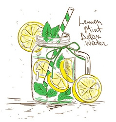Sketch of Lemon Mint Detox water vector