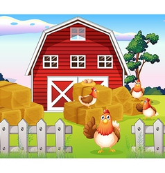 Chickens at the farm near the red barnhouse vector image