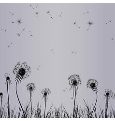 dandilone seam grey vector image