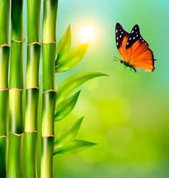 Spa background with bamboo and butterfly vector image vector image