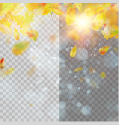autumn concept template with copy space eps 10 vector image