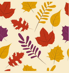 autumn season fall leaf seamless pattern vector image