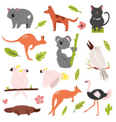 big flat set famous australian animals vector image
