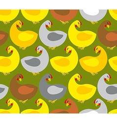 Chicken seamless pattern Chicken farm Many colored vector image