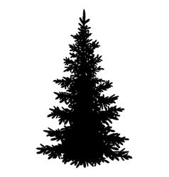 Christmas fir tree silhouette vector image vector image