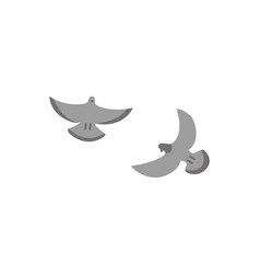 couple grey flying doves isolated on white vector image