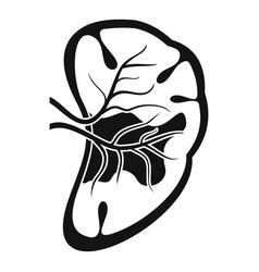 Cut spleen icon simple style vector