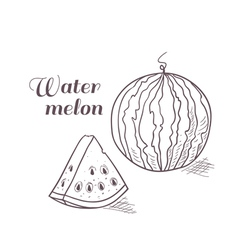 Engraved watermelon with slice vector image