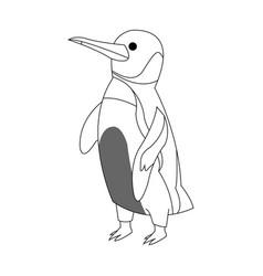 Penguin cartoon icon vector