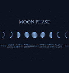 phases of the moon the whole cycle from new moon vector image