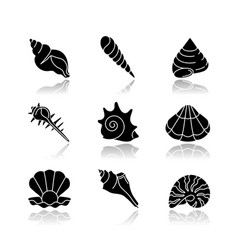 Sea shells drop shadow black glyph icons set vector