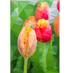 Triangular low poly style of tulip vector image