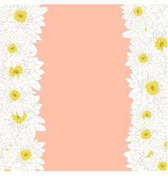 white chrysanthemum border vector image