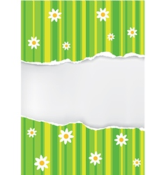 Spring backgroud ripped paper vector image vector image