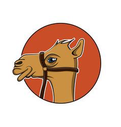 camel icon design vector image