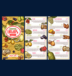 exotic fruits and tropical berries price list vector image
