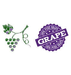 Grape plant mosaic of wine bottles and grape and vector