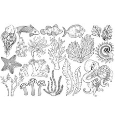 sketch deepwater living organisms fish and vector image