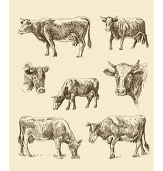 cows hand draw sketch vector image