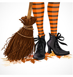 halloween closeup witch legs in boots and with vector image