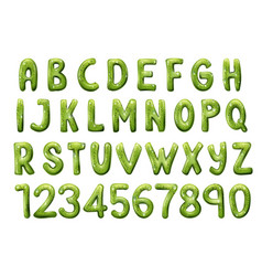 Kiwi tropical fruit font letters and numbers vector
