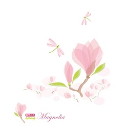 magnolia branch and dragonfly vector image