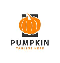 Pumpkin fruit modern logo vector