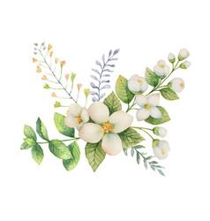 Watercolor bouquet jasmine and mint vector
