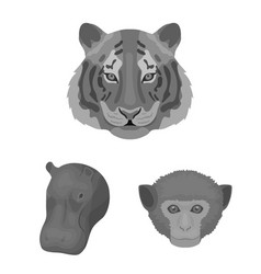 Wild animal monochrome icons in set collection for vector