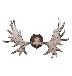 color of moose antlers trophy vector image