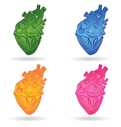 heart real set vector image vector image