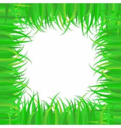 frame of grass vector image vector image