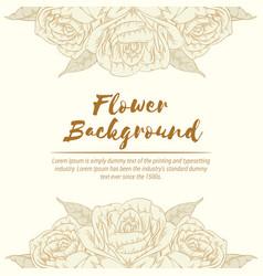 background rose handdrawn flower floral sketch vector image