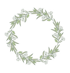 frame branches with leaves vector image