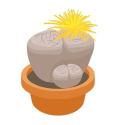 Living stone cactus icon cartoon style vector
