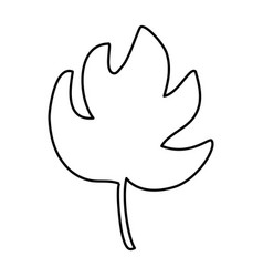 tropical leaf icon vector image