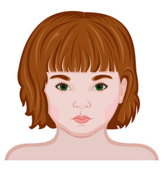 face of a little girl vector image