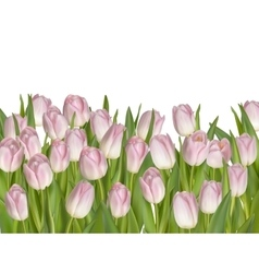 Holiday background with pink flowers EPS 10 vector image