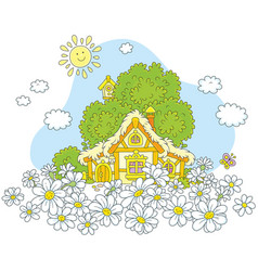 lodge and white daisies vector image vector image