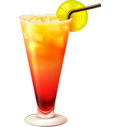 Tequila sunrise cocktail realistic vector image vector image