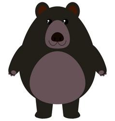 Black bear on white background vector