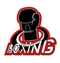 boxing icon vector image