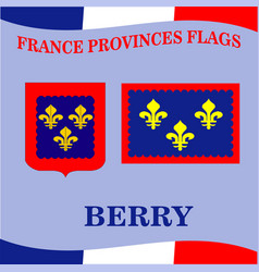 Flag of french province berry vector