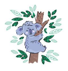 Koala australian animal cartoon bear vector