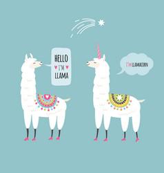 Llamas vector
