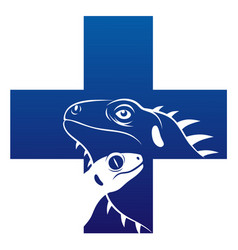 reptile veterinary icon vector image